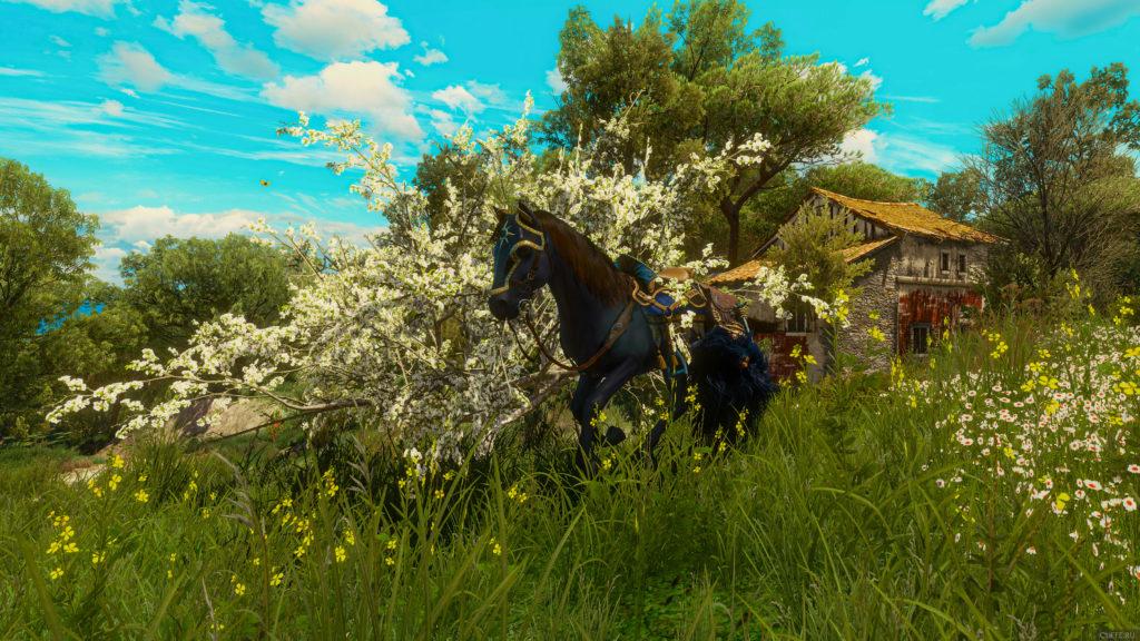 Плотва рядом с цветущим деревом